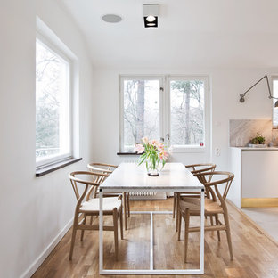 Inspiration for a scandinavian dining room remodel in Stockholm