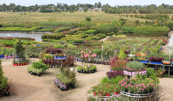 Massive Selection of Plants Available