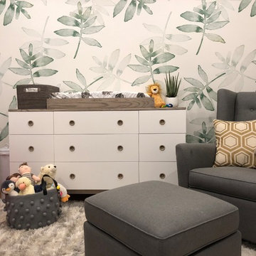 Whimsical Boy's Nursery in Arlington, VA