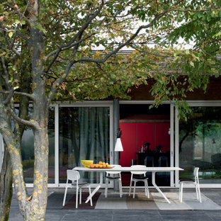 Immagine di un grande patio o portico design dietro casa con pavimentazioni in cemento e un tetto a sbalzo