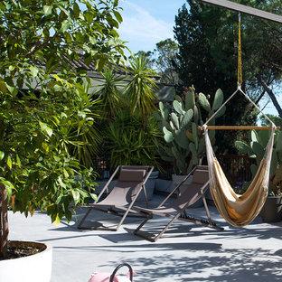 Ejemplo de patio exótico, sin cubierta, con jardín de macetas y losas de hormigón