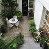 Garden Tour: A Small Courtyard Garden With Year-round Colour