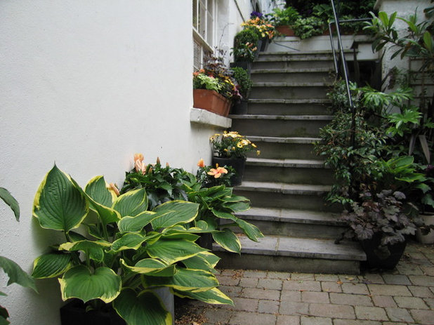 Traditional Patio by Silva Landscapes