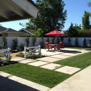Inspiration för mellanstora moderna uteplatser på baksidan av huset, med en vertikal trädgård och betongplatta