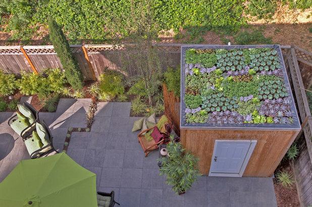 Minimalistisch Patio by Paradise Restored Landscaping & Exterior Design