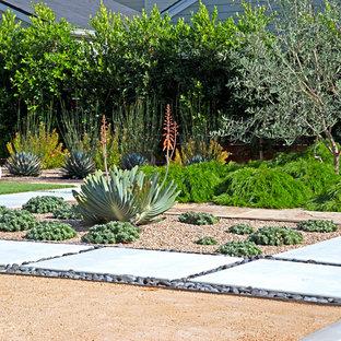 Inspiration för en stor funkis uteplats på baksidan av huset, med en pergola, en vertikal trädgård och granitkomposit