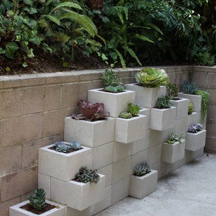 Inspiration for a mid-sized modern backyard concrete patio container garden remodel in Los Angeles with no cover