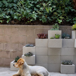 Mid-sized minimalist backyard concrete patio container garden photo in Los Angeles with no cover