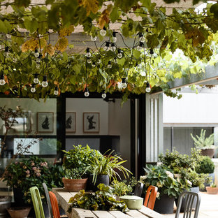This is an example of a contemporary backyard patio in Melbourne with a container garden, gravel and a pergola.