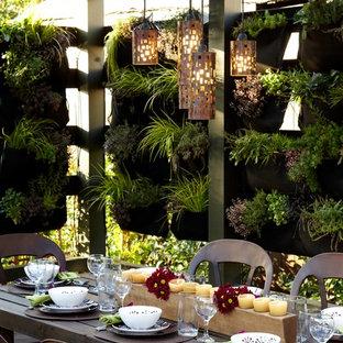 Idee per un patio o portico industriale dietro casa con una pergola