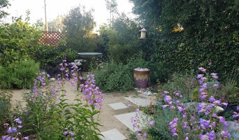 Backyard: CA Natives with bubbling water feature