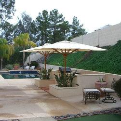 Backyard Pool Design -
