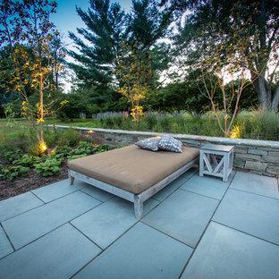 Esempio di un patio o portico moderno di medie dimensioni e dietro casa con un giardino in vaso, nessuna copertura e pavimentazioni in cemento