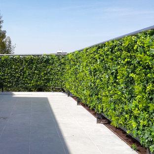 Foto de patio minimalista, de tamaño medio, en patio trasero, con jardín vertical