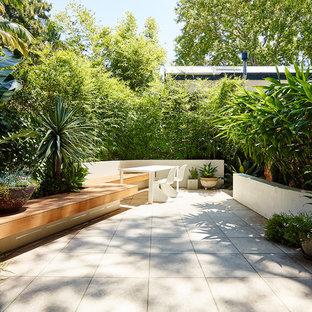 Cette photo montre une petite terrasse arrière tendance avec des pavés en béton.