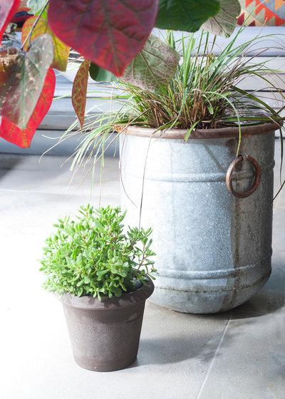 Eklektisk Gårdhave by The London Gardener Ltd