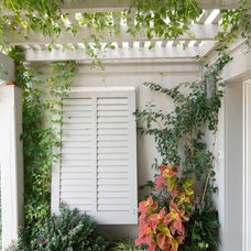Traditional Patio by Pine Street Carpenters & The Kitchen Studio