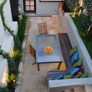 Birchgrove - Tiny Courtyard
