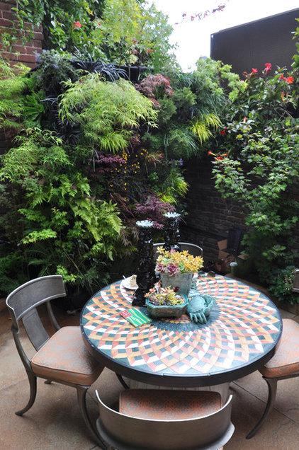 Contemporary Patio Birds of Prey Courtyard Garden by Living Green