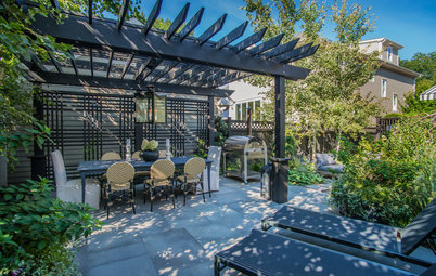 Before and After: 3 Backyards Gain Privacy and Better Views