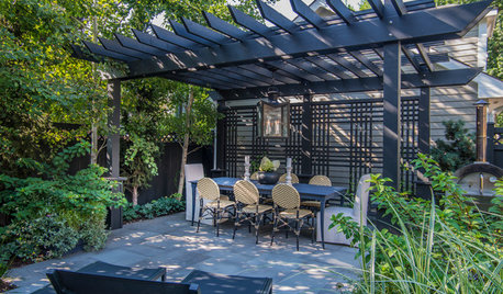 Why You Should Consider a Landscape Screen for Your Yard