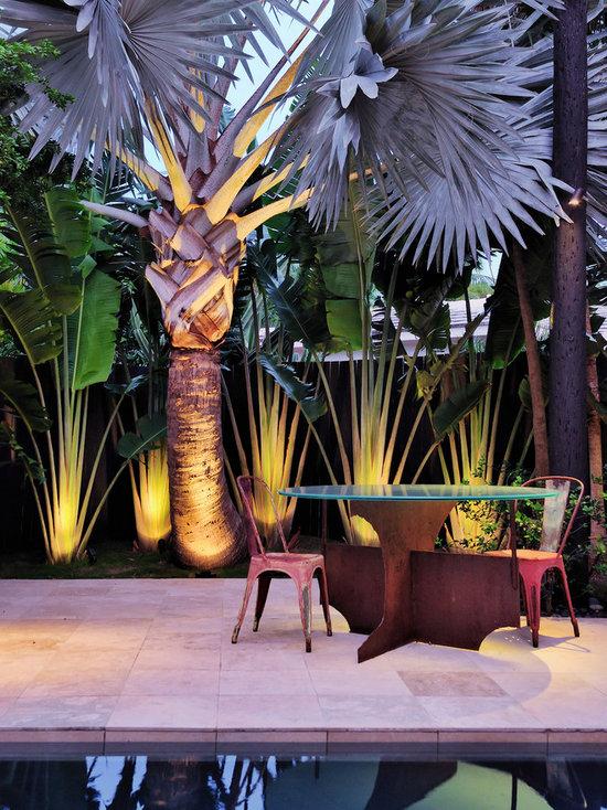 889 Porch Container Palm Tree Plan Patio Design Photos