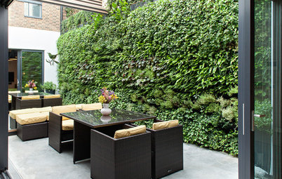 10 Reasons to Love Vertical Gardens