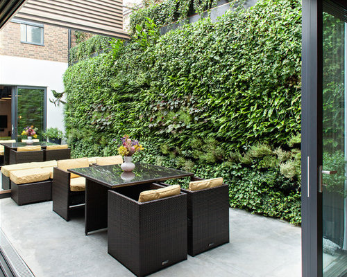 Pretty Vertical Garden Home Design Ideas Renovations  Photos With Licious Photo Of A Contemporary Patio In London With A Vertical Garden Concrete  Slab And No With Awesome Garden Nature Also Examples Of Garden Path Sentences In Addition In The Night Garden Tableware And In The Night Garden Cot Bedding As Well As Gardening Express Voucher Additionally Wetherspoon Covent Garden From Houzzcomau With   Licious Vertical Garden Home Design Ideas Renovations  Photos With Awesome Photo Of A Contemporary Patio In London With A Vertical Garden Concrete  Slab And No And Pretty Garden Nature Also Examples Of Garden Path Sentences In Addition In The Night Garden Tableware From Houzzcomau