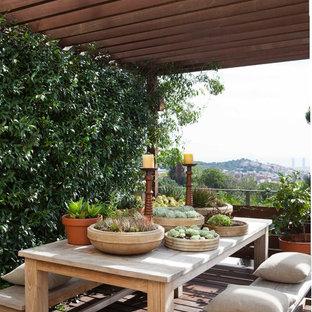 Imagen de patio mediterráneo, de tamaño medio, con jardín vertical y pérgola