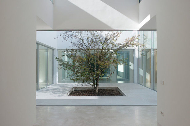 Contemporáneo Patio by Otto Medem Arquitectura
