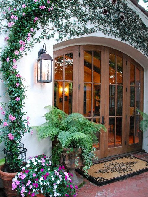 Mandevilla Vine Home Design Ideas Pictures Remodel And Decor