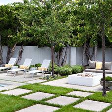 Beach Style Patio by Molly Wood Garden Design