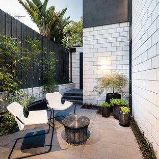 Design ideas for a contemporary courtyard patio in Melbourne with no cover.