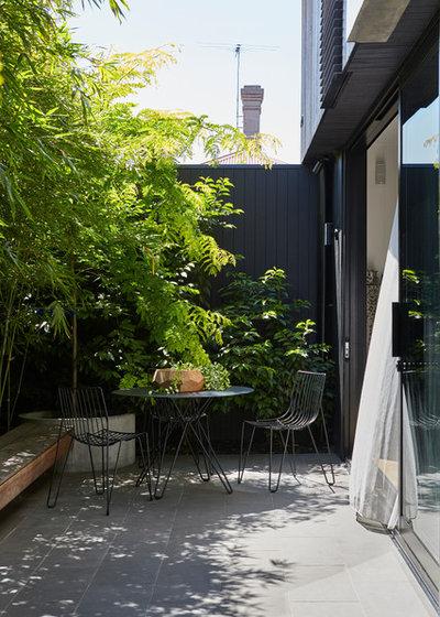 Contemporary Patio by Peachy Green Garden Architects