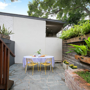 This is an example of a contemporary backyard patio in Sydney with a container garden, natural stone pavers and no cover.
