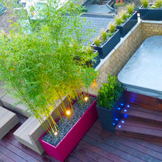 Contemporary Patio by Cityscapers