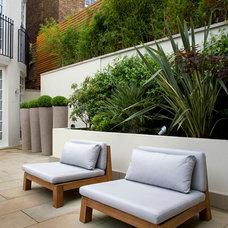 Modern Patio by Laara Copley-Smith Garden & Landscape Design