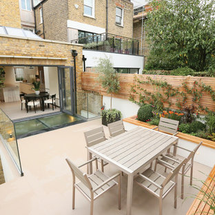 Inspiration for a small contemporary back patio in London with a potted garden and no cover.