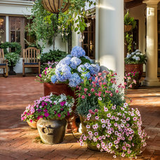 Mediterranean Landscape by Casa Smith Designs, LLC