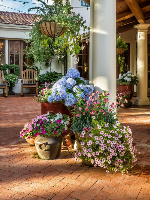 Outdoor potted plant houzz for Home garden design houzz