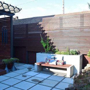 Esempio di un piccolo patio o portico etnico dietro casa con un giardino in vaso, pavimentazioni in cemento e una pergola