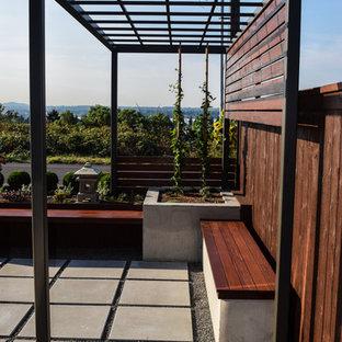 Idee per un piccolo patio o portico etnico davanti casa con pavimentazioni in cemento e una pergola