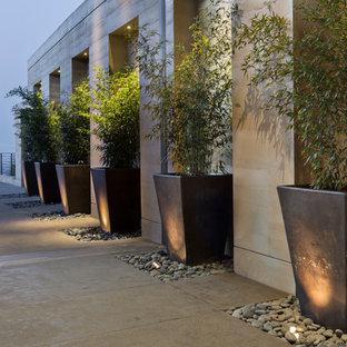 Esempio di un ampio patio o portico minimalista con lastre di cemento