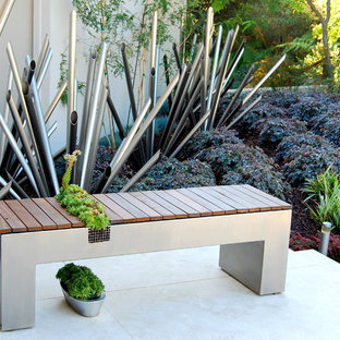 Inspiration for a contemporary patio remodel in San Francisco with no cover