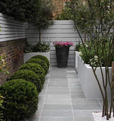 Contemporary Patio by Ruth Willmott Associates