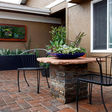 Contemporary Patio by Singing Gardens