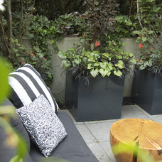 Contemporary Patio by CYAN Horticulture