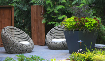 Contemporary Woodland Garden for a South Surrey Family