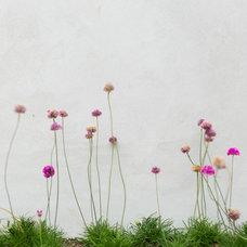 Traditional Patio by Garden Studio