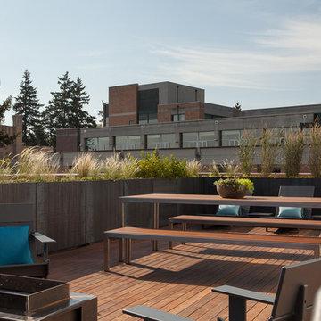 Corten Steel Planters Roof Deck Portland